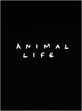 animal_life_1_new